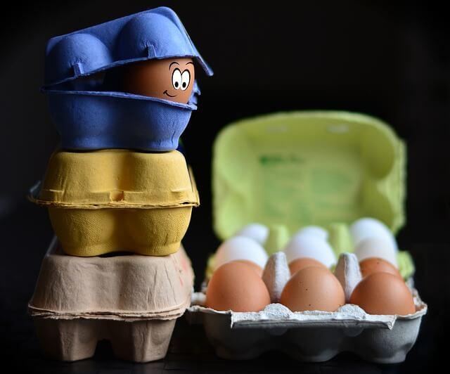 witamina b12 w jajkach