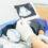 Rodzaje i zakres badań ginekologicznych